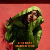 m-i-a-bird-song-blaqstarr-remix-2016-2480x2480